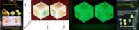 Dice : MINT32 UNKNOWN CHINESE GLOW IN THE DARK DICE 01