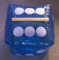 Dice : MINT26 UNKNOWN 16 INCH INFLATABLE 01